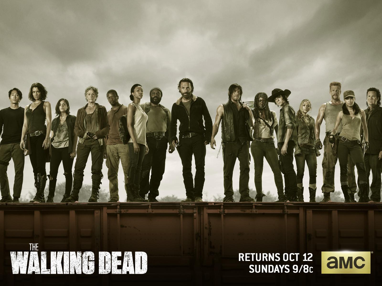 Post Walking Dead Season